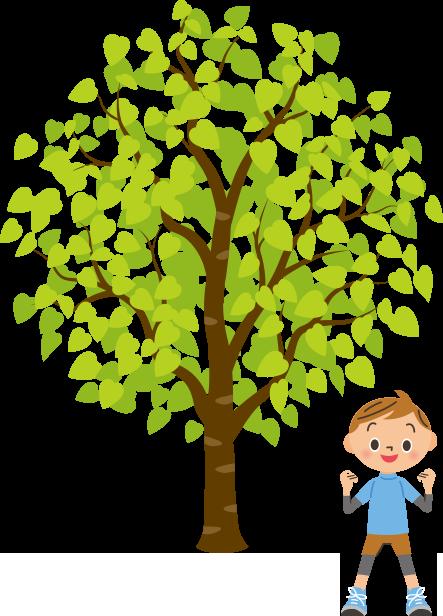 男の子が大きな木の下で運動しているのイラスト